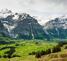 Grindelwald in Spring by peterwey