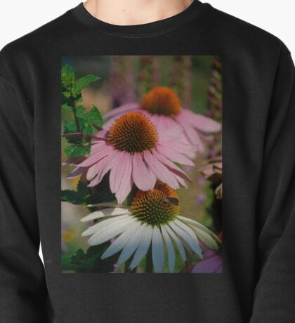 Echinacea Purpurea with Small Butterfly  Pullover