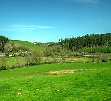 Eggesford Vista  by Rob Hawkins