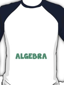 Another Day Has Passed And I Still Haven't Used Algebra! T-Shirt