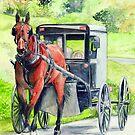 Amish Horse and Buggy by morgansartworld