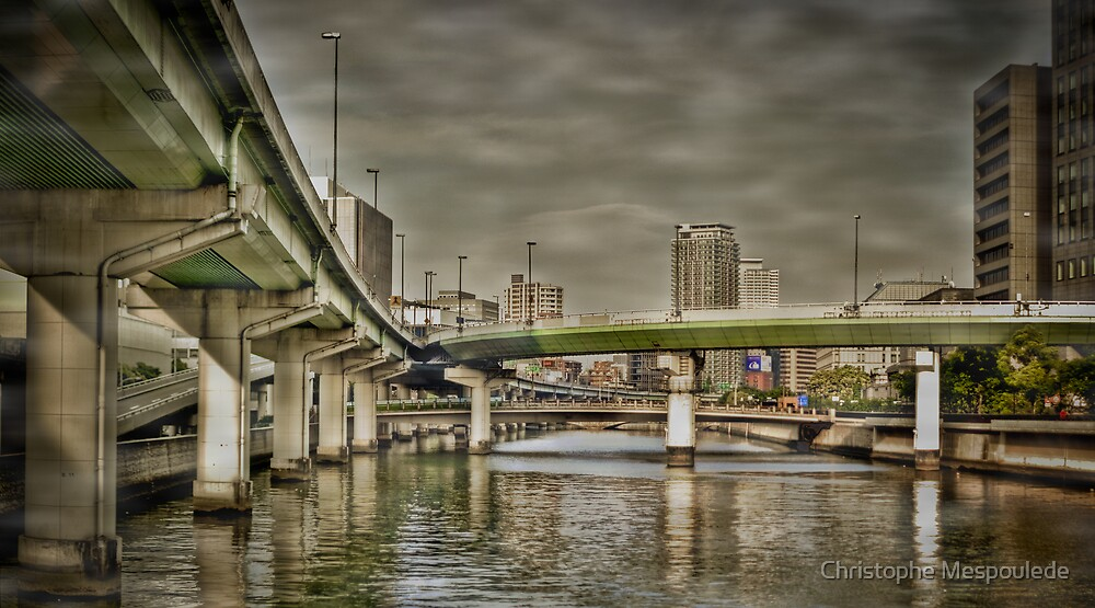 Dojima bridges by Christophe Mespoulede