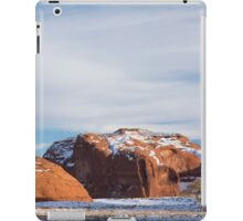 Lone Tree iPad Case/Skin