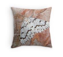 False Hemlock Looper Moth IMG_3605 Throw Pillow