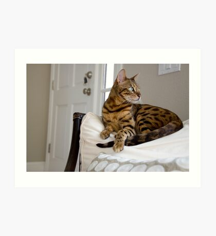 Forrest the Bengal  Art Print