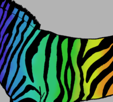 Rainbow Zebra Sticker