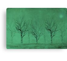 Winter Trees in the Mist Canvas Print