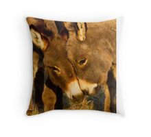 Kissing Ass Throw Pillow