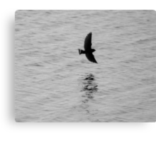 Swallow over the Ley Canvas Print
