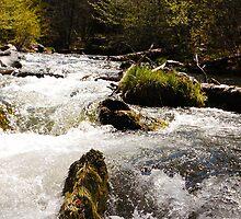 Waters Rushing Towards Me by BellaStarr