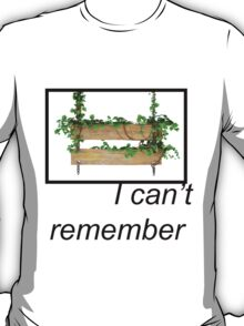 I can't remember. T-Shirt
