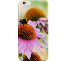 Echinacea Purpurea with Bee 1 iPhone Case/Skin
