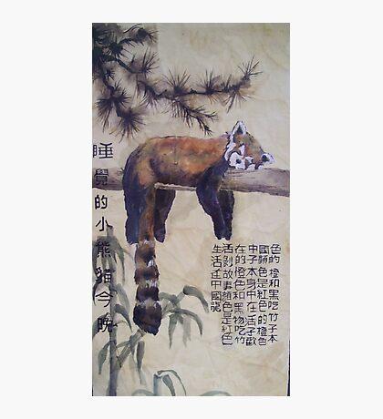 Red Panda (Conceptual) Photographic Print