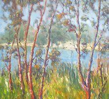 Sunlight on Trees by David Hinchliffe