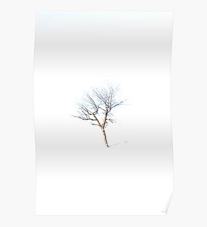 Lone Poster