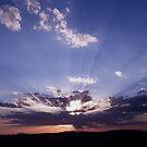 Evening Sun by AravindTeki