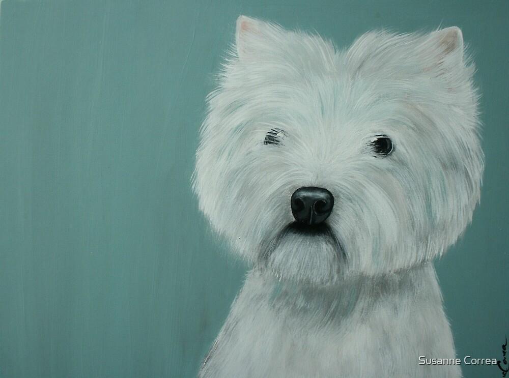 West Highland Terrier by Susanne Correa
