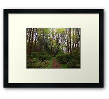 The Way Home - Campbell River, BC, Canada Framed Print