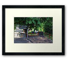 Irish signposts Framed Print
