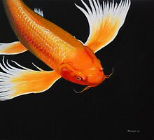 Coy Koi by Michael Beddall