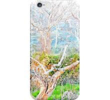 Laureana Cilento: trees and crumbling wall iPhone Case/Skin