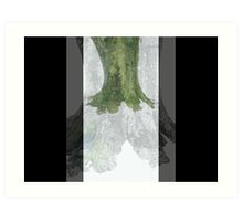 Three Tree Trunk Art Print