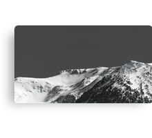 Black and Snow Canvas Print