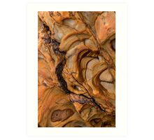 The Geology of Widemouth Bay, Cornwall 2 Art Print
