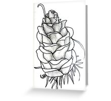 pine cone study Greeting Card