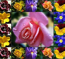 Mixed Flowers Collage Featuring Pink Rose by kathrynsgallery