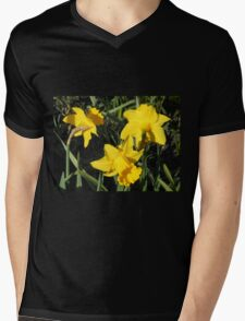 Daffodils Dreaming Mens V-Neck T-Shirt
