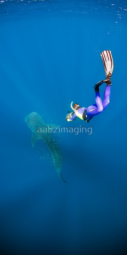 Into the Blue by aabzimaging