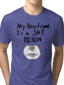 My Best Friend Is A Sky Bison Tri-blend T-Shirt