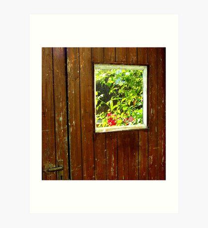 Windows & Doors Art Print