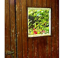 Windows & Doors Photographic Print