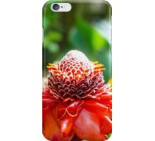Red Flowers. Botanical Shmanical. iPhone Case/Skin
