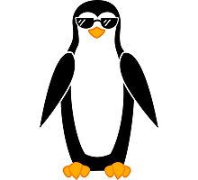 Cool Penguin Photographic Print
