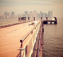 The Seagull in Liberty Island, New York City Vintage photograph by jaysanstudio