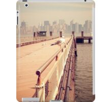 The Seagull in Liberty Island, New York City Vintage photograph iPad Case/Skin
