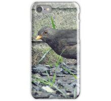 Day 116 iPhone Case/Skin