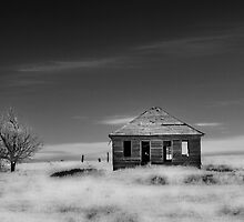 HOME ON THE RANGE by dvande1