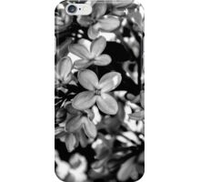 """Smallest Details"" iPhone Case/Skin"