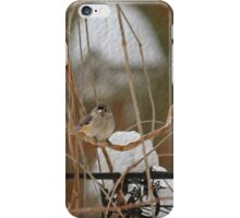 Winter Perch ~ Bird with Birdhouse ~ Digital Painting iPhone Case/Skin