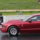 Mustang Racer by Vicki Spindler (VHS Photography)
