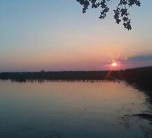 Sunset in the Marshlands by Nippyfish