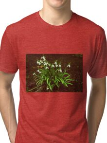 Down In The Woods Tri-blend T-Shirt