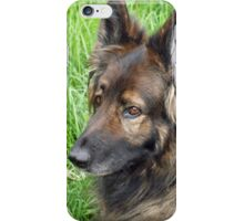 Hanging out in the yard iPhone Case/Skin