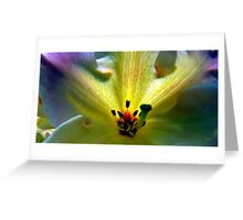 Fireflower Three Greeting Card