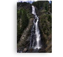a long fall Canvas Print