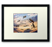 Tiger Moth Ballet Framed Print